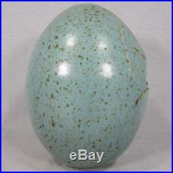 Dennis Thompson Dragon Hatchling Egg from Snobhog Studios Art Pottery Perfect